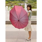 傘 雫|背中まですっぽり、隠れるから雨に濡れにくい
