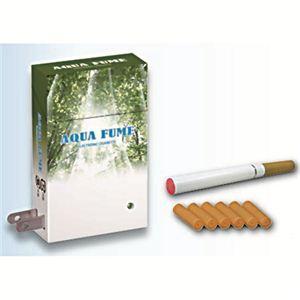 トータル・アイ 電子タバコ AQUA ミント風味 - 拡大画像