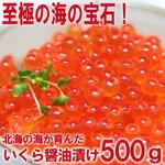 【お中元用 のし付き(名入れ不可) 北海道網走産】お徳用!ぷっちぷちのいくらの醤油漬500g