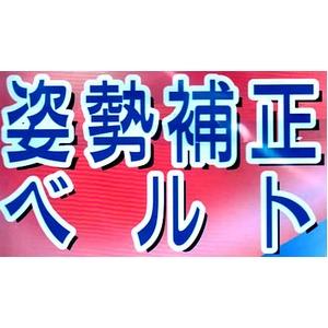 シャキッと姿勢補正ベルト (姿勢を正しくするシリーズ) M