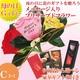 【4月27日で予約終了 母の日特選ギフト】 薔薇の花びらに感謝のメッセージが!豪華商品が5種より選べるギフト商品付き Cコース 花は赤色です