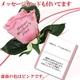 【母の日特選ギフト】 薔薇の花びらに感謝のメッセージが!豪華商品が5種より選べるギフト商品付き Cコース 花はピンクです 写真2