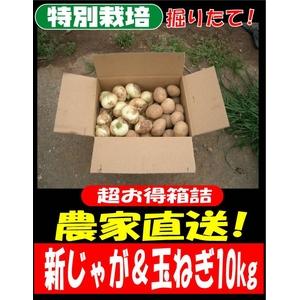 特別栽培農家直送「新じゃがいも&新玉ねぎセット」10kg(各5kg)