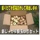 特別栽培農家直送「新じゃがいも&新玉ねぎセット」10kg(各5kg) 写真2