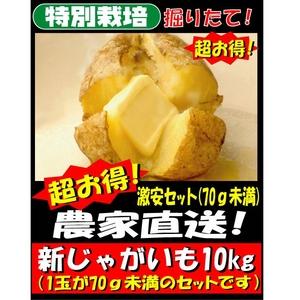 【オススメ!】特別栽培農家直送「新じゃがいも(70g未満サイズ)」 10kg
