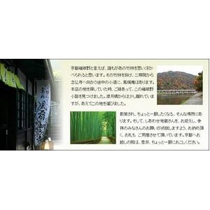 嵯峨野大福 青りんご18個入り