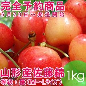 【完全予約商品】バラ詰めさくらんぼ佐藤錦1キロ 等級:優(M〜Lサイズ)