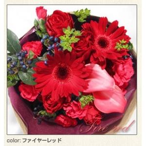 幸せいっぱいの贈り物 フェアリーブーケ ファイヤーレッド とっておきのプレゼント♪心を込めた花束を・・・♪ - 拡大画像