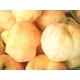 【9月17日で終了】 フルーツ王国福島の最上級極甘プレミアム桃  お口いっぱいに広がる果汁とジューシーでとろける果肉♪福島が誇る最上級極甘桃!【高糖度】 2キロ 【6〜9個】  - 縮小画像6