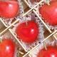 【遅れてごめんね、お母さん】メッセージカード付き さくらんぼ佐藤錦24粒と生花カーネーションのセット 写真4