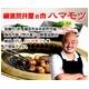 【創業50年 横浜荒井屋】黒毛和牛小腸(マルチャン)2kg - 縮小画像2