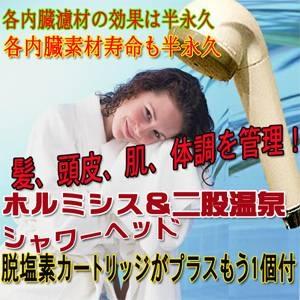 シャワーマスターデラックス