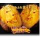 種子島産甘蜜芋「みつ姫」 冷凍  500g×5袋(計2.5kg) 写真2