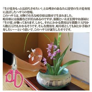 花切専用ハサミ 「花切かれず」 ステンレス製 ...の紹介画像3