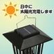 ソーラー充電式 電撃殺虫器&ガーデンライト - 縮小画像5