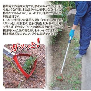 雑草抜きごそっと「とれ太」ビッグ アルミ伸縮タイプ