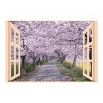 お風呂のポスター四季彩 桜並木