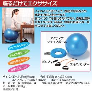 バランスボール/アクティブシェイプボール 【台座・エキスパンダー付き】 直径65cm