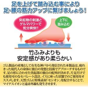 足踏み運動器/ふみふみエレキ (抗菌/消臭/イオン/遠赤)