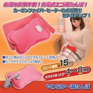 充電式コードレス湯たんぽ/やわらか~湯たんぽ 専用保温袋付き