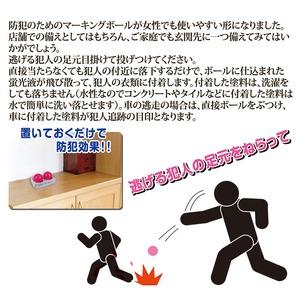 防犯カラーボール マーキングエッグ 【2個入り】 小型タイプ/水性 (防犯対策グッズ)