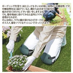 作業用膝当て/ふんわりひざガード 【2個入り/フリーサイズ】 ソフトタイプ (ガーデニング用品)