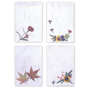 おし花教室セット(押し花キット) 和風フィルム付き 日本製 〔手芸キット 趣味〕