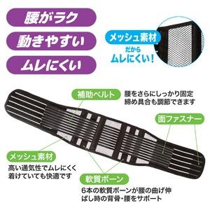 しっかり腰ベルト スリム L/XL 65~85cm
