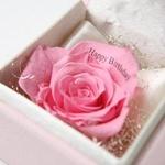 """メッセージ・プリザーブド★プチローザ(ピンク色BOX)★""""Merry Christmas"""""""