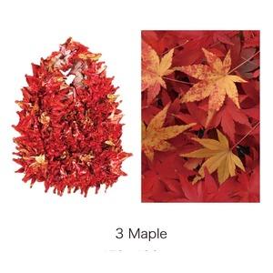 HAM−15絞りバッグ Maple