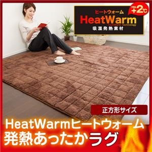 HeatWarm(ヒートウォーム) 発熱あったかラグ【正方形185cm×185cm】(NT) 正方形 ベージュの詳細を見る