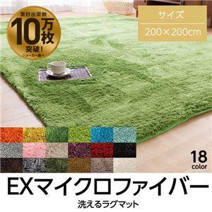 E×マイクロファイバー洗えるラグマット (200×200cm 正方形) ブラウン