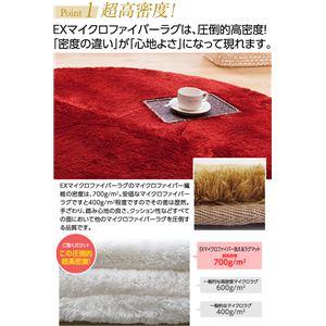 E×マイクロファイバー洗えるラグマット (200×200cm 正方形) グレー