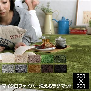 E×マイクロファイバー洗えるラグマット (200×200cm 正方形) エメラルドグリーン