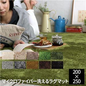 E×マイクロファイバー洗えるラグマット (200×250cm) エメラルドグリーン