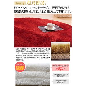 E×マイクロファイバー洗えるラグマット (直径140cm) レッド