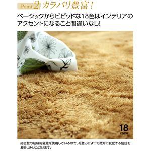 E×マイクロファイバー洗えるラグマット (直径140cm) パープル