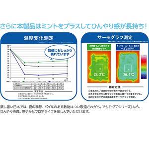 接触冷感-2℃ 涼感ラグ サイクロンS(防ダニ・抗菌・接触冷感機能付) 190×190cm シルバー