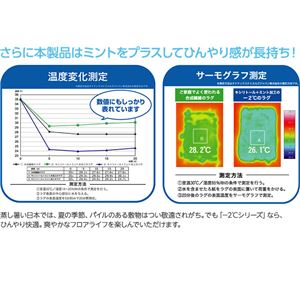 接触冷感-2℃ 涼感ラグ サイクロンS(防ダニ・抗菌・接触冷感機能付) 190×190cm グリーン