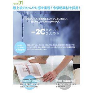 接触冷感-2℃ 涼感ラグ アイスベルク(防ダニ・抗菌・接触冷感・手洗い可) 130×190cm ブルー