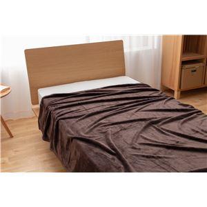 mofua プレミアムマイクロファイバー毛布 セミダブル ブラウン