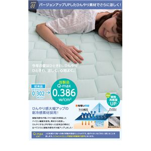 mofua cool 接触冷感・防ダニ・抗菌防臭快適敷パッド(東洋紡フィルハーモニィ(R) わた使用) ダブル ブルー