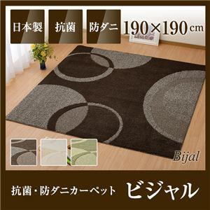 国産デザインラグマット(抗菌・防ダニカーペット)ビジャル 190×190cm グリーンの詳細を見る