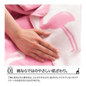 mofua natural 肌にやさしい綿ブランケット(動物柄) S(シングル) シロクマ