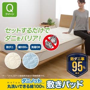 mofua ダニノット(R)使用 丸洗いできる 綿100% 敷きパッド  クイーン  ブルー