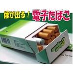 話題の大人気商品!電子タバコの定番!e-シガレット レギュラー