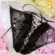 コスプレ ランジェリー 2011新作 ガーター付き花刺繍ベビードール&ショーツ&ストッキング 写真4