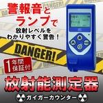 ガイガーカウンター RAY-2000A 日本語意訳説明書付 【放射線測定器】