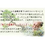 【通信講座】藤田茂男の流儀 〜盆栽上達法〜 [DVD&テキスト]