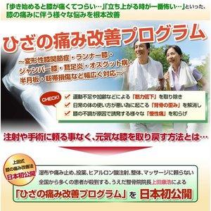 【上田式】膝の痛み改善法〜1日5分から始める、自宅簡単エクササイズ〜[DVD] - 拡大画像